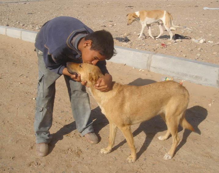 dogging nu thai randers