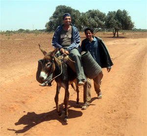Tour in the rural aeras  with helpof donkey