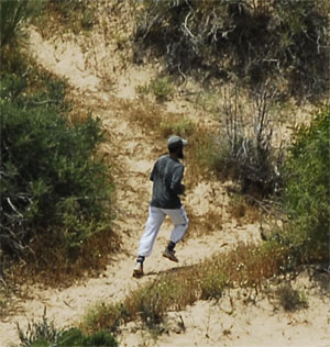 A man jogging in the dune forest