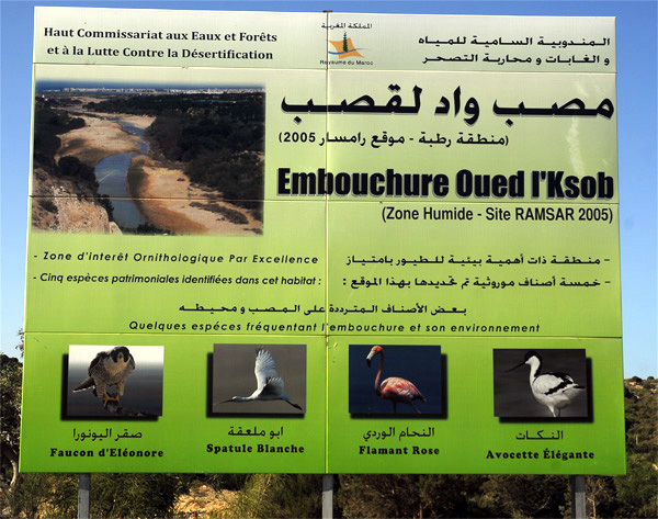 Info Oued Ksob