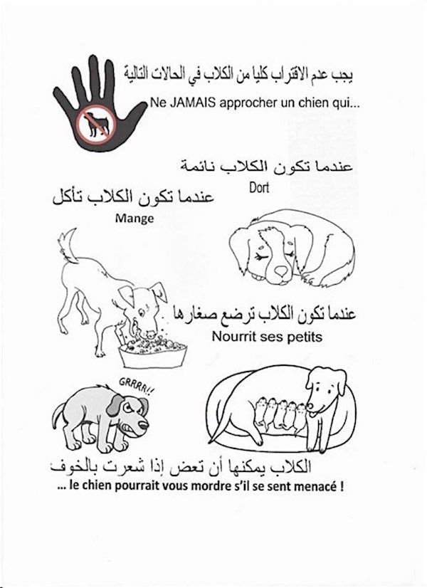 Rabies INFO Arabic and French
