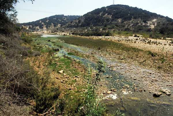 The river (Oued ) Ksob
